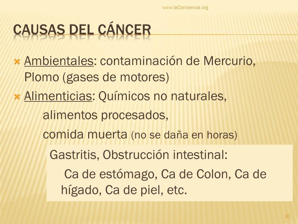 Ambientales: contaminación de Mercurio, Plomo (gases de motores) Alimenticias: Químicos no naturales, alimentos procesados, comida muerta (no se daña