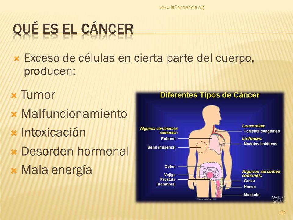 Exceso de células en cierta parte del cuerpo, producen: Tumor Malfuncionamiento Intoxicación Desorden hormonal Mala energía www.laConciencia.org 12