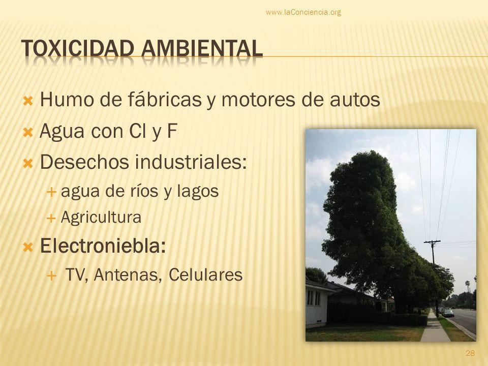 Humo de fábricas y motores de autos Agua con Cl y F Desechos industriales: agua de ríos y lagos Agricultura Electroniebla: TV, Antenas, Celulares www.