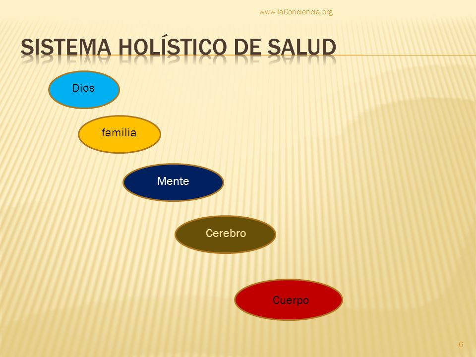 zinc minerales potasio Alcalinidad: bicarbonato de sodio Agua = H2O pura: no CL, no F, no tierra, no óxido, no químicos www.laConciencia.org 27