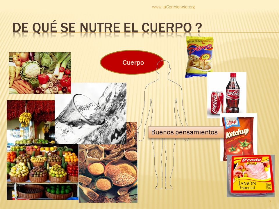 http://consejosdeartemisa.wordpress.com/ http://vidaecologica.org www.laconciencia.org www.gerson.org www.opcionesnaturales.com Películas: «Beautiful truth», «Food matters», «Dying to have known», «The gerson miracle» www.laConciencia.org 38