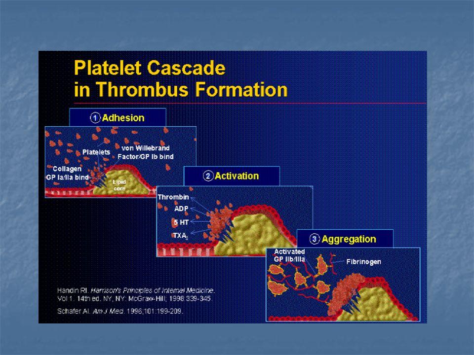 INDICACIONES: Coronariografia: Coronariografia: PTCA 1ra o de rescate (Ia) Shock cardiogenico candidato a revasc PTCA (Ia) Paciente con inestabilidad hemodinamica y/o ritmica persistente (Ib) Complicaciones pasibles de reparacion quirurgica (Ib) No realizar en pacientes con comorbilidades que ponen en riesgo beneficio de la PCTA (C) No realizar en pacientes con comorbilidades que ponen en riesgo beneficio de la PCTA (C)