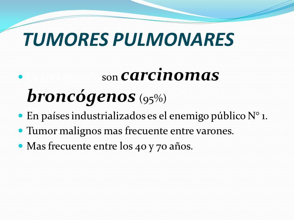 NEUMONÍA Lo más importante es la identificación del agente y la determinación de la extensión de la enfermedad. TIPOS: Bronconeumonía: consolidación p