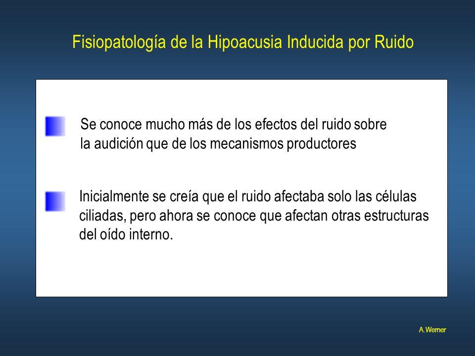 Fisiopatología de la Hipoacusia Inducida por Ruido Se conoce mucho más de los efectos del ruido sobre la audición que de los mecanismos productores In