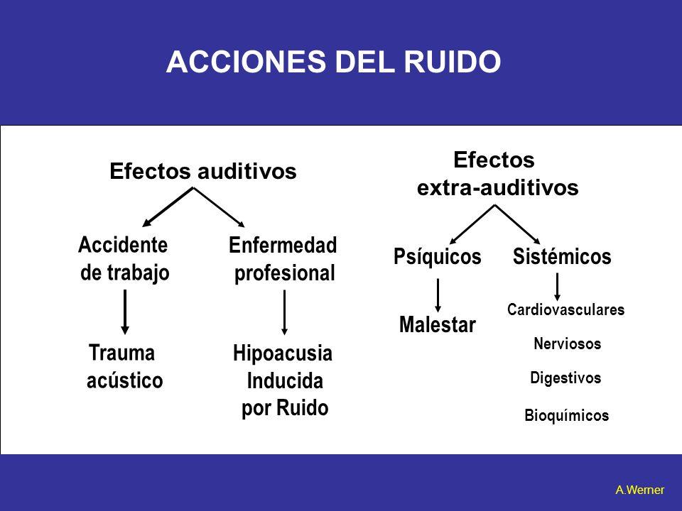 ACCIONES DEL RUIDO Efectos auditivos Efectos extra-auditivos Trauma acústico Accidente de trabajo Enfermedad profesional Hipoacusia Inducida por Ruido