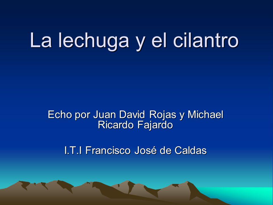 La lechuga y el cilantro Echo por Juan David Rojas y Michael Ricardo Fajardo I.T.I Francisco José de Caldas