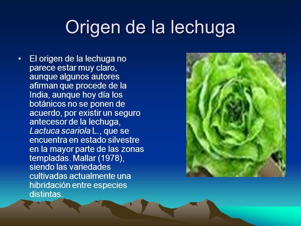 Cultivado de la lechuga Temperatura.La temperatura óptima de germinación oscila entre 18-20ºC.
