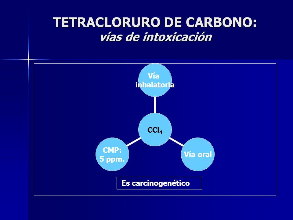 TETRACLORURO DE CARBONO: vías de intoxicación CCl4 Vía inhalatoria Vía oral CMP: 5 ppm. Es carcinogenético