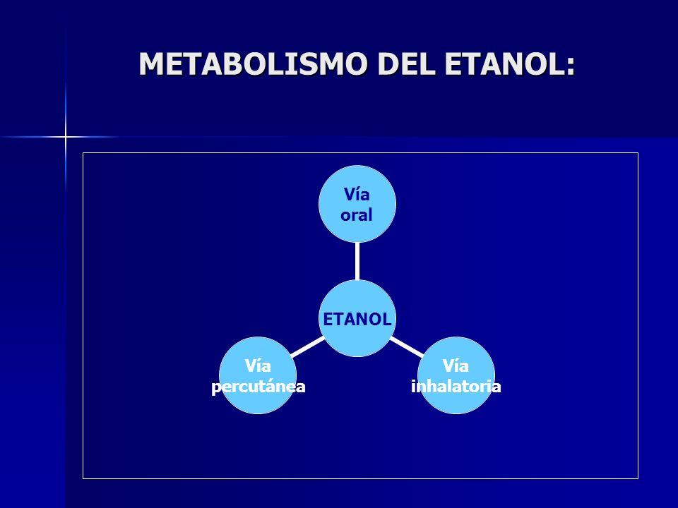 METABOLISMO DEL ETANOL: ETANOL Vía oral Vía inhalatoria Vía percutánea
