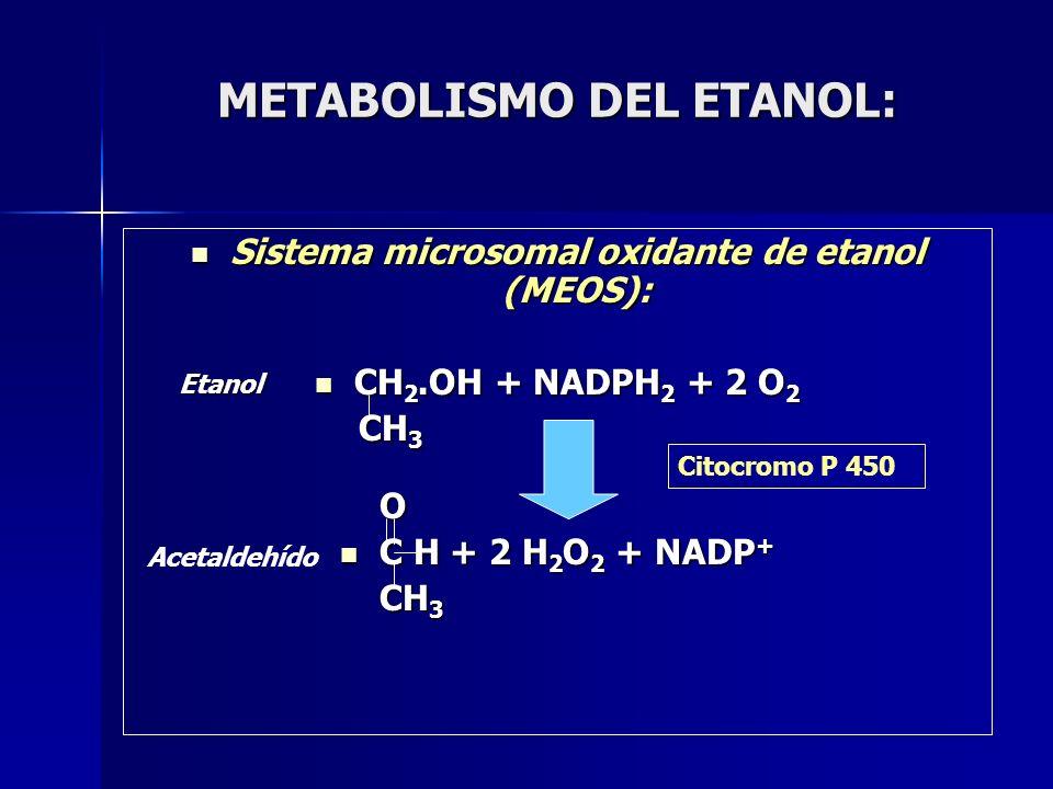 METABOLISMO DEL ETANOL: Sistema microsomal oxidante de etanol (MEOS): Sistema microsomal oxidante de etanol (MEOS): CH 2.OH + NADPH 2 + 2 O 2 CH 2.OH