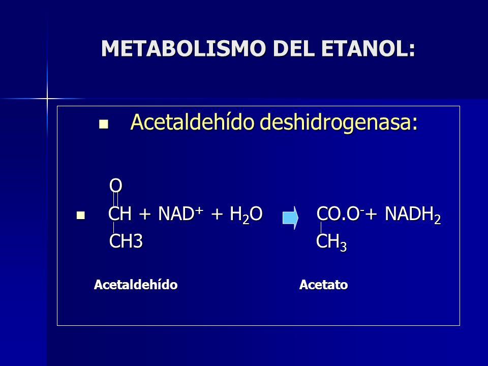 METABOLISMO DEL ETANOL: Acetaldehído deshidrogenasa: Acetaldehído deshidrogenasa: O CH + NAD + + H 2 O CO.O - + NADH 2 CH + NAD + + H 2 O CO.O - + NAD