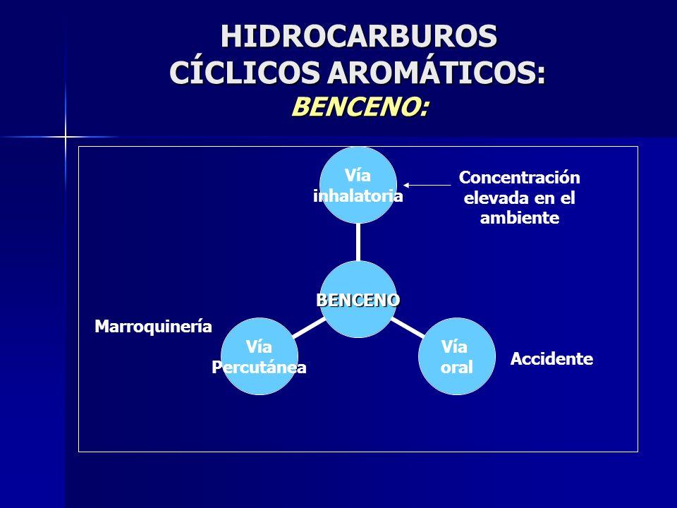 HIDROCARBUROS CÍCLICOS AROMÁTICOS: BENCENO: BENCENO Vía inhalatoria Vía oral Vía Percutánea Concentración elevada en el ambiente Accidente Marroquiner
