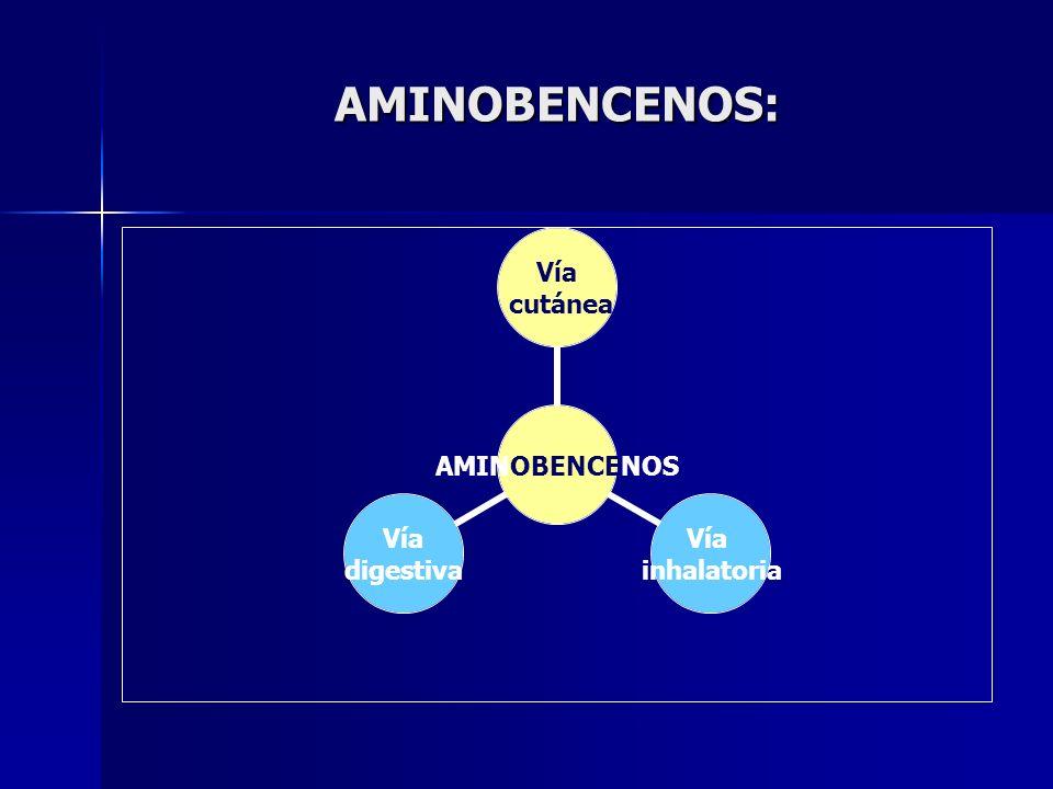 AMINOBENCENOS: AMINOBENCENOS Vía cutánea Vía inhalatoria Vía digestiva