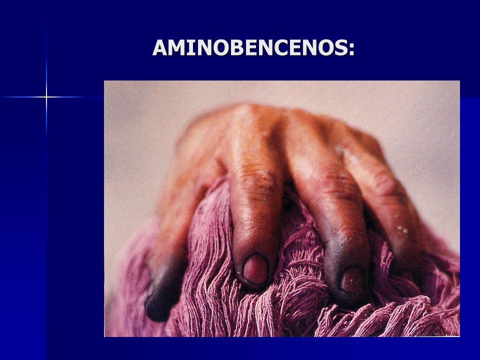AMINOBENCENOS: