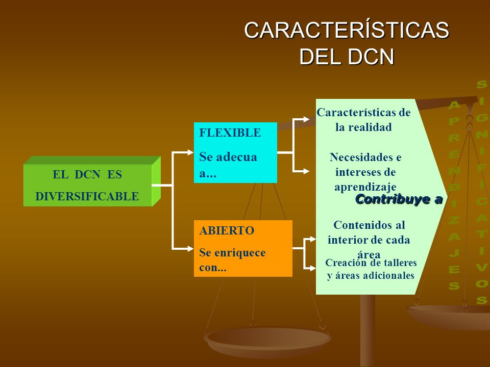 Contribuye a CARACTERÍSTICAS DEL DCN EL DCN ES DIVERSIFICABLE FLEXIBLE Se adecua a...