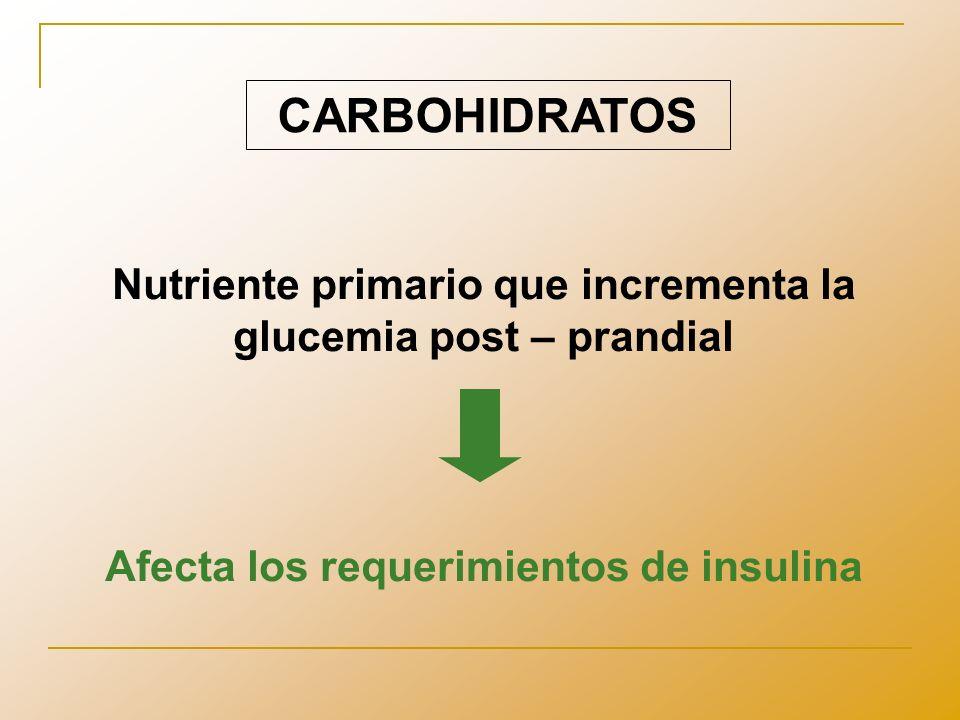 Considerar también… Aporte calórico Aporte proteico Cantidad y calidad de grasas Aporte de vitaminas, minerales y oligoelementos