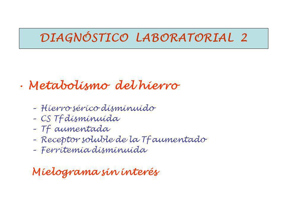 Diagnóstico laboratorial 2 Metabolismo del hierro –Hierro sérico disminuido –CS Tf disminuida –Tf aumentada –Receptor soluble de la Tf aumentado –Ferritemia disminuida Mielograma sin interés DIAGNÓSTICO LABORATORIAL 2
