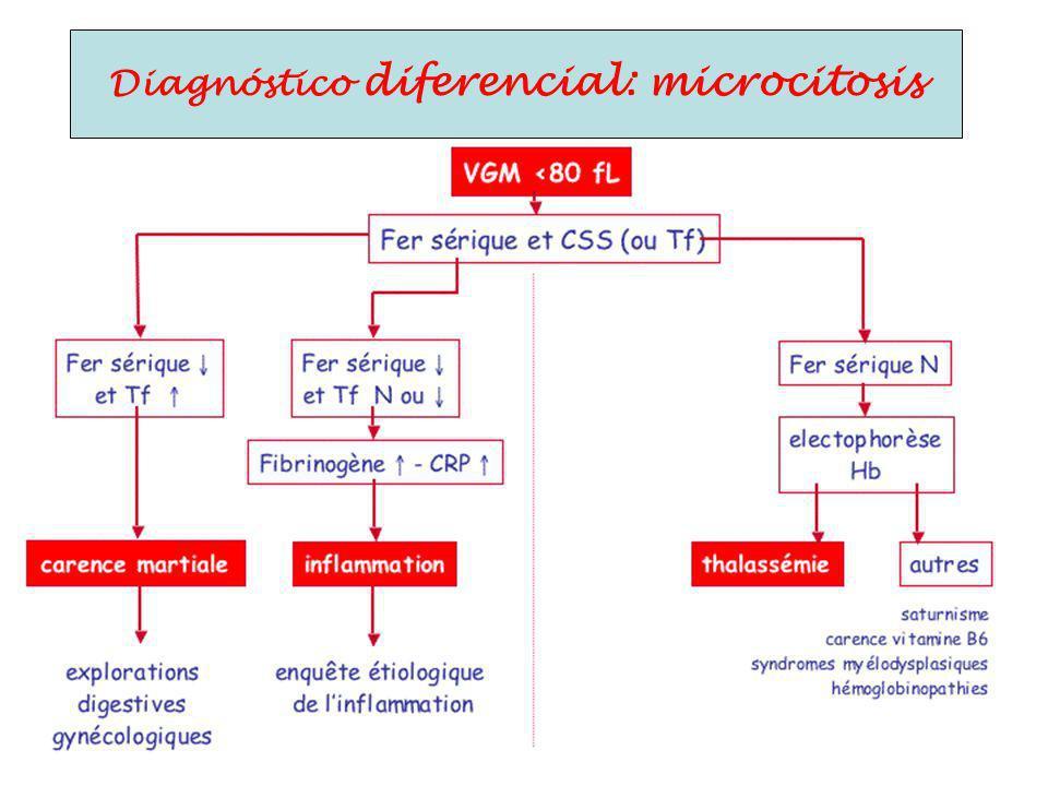 Diagnóstico diferencial: microcitosis