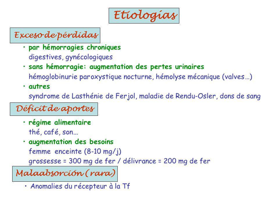 Exceso de pérdidas Déficit de aportes Malaabsorción (rara) Etiologías