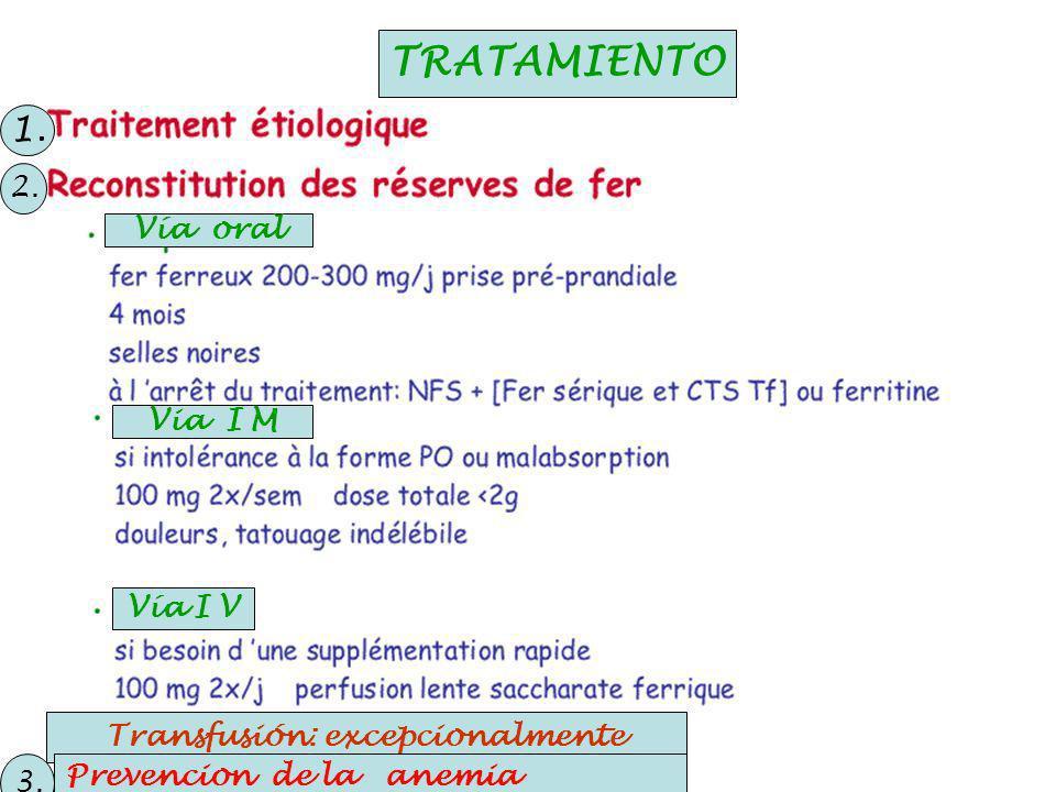 Vía oral Via I M Vía I V TRATAMIENTO Transfusión: excepcionalmente Prevención de la anemia Prevencion de la anemia 1.