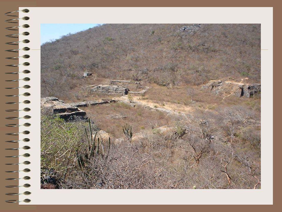 Pese a que Ahuítzotl mandó lo mejor de sus fuerzas, Cosijoeza logró resistir, durante siete meses, a todos los embates de los enfurecidos aztecas en el cerro Guie Ngola.
