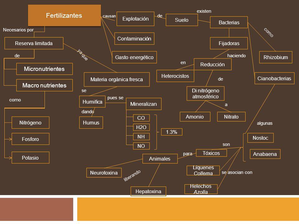 Explotación Reserva limitada Fertilizantes Contaminación Fosforo Neurotoxina Nitrógeno Potasio Materia orgánica fresca Gasto energético Humus Humifica