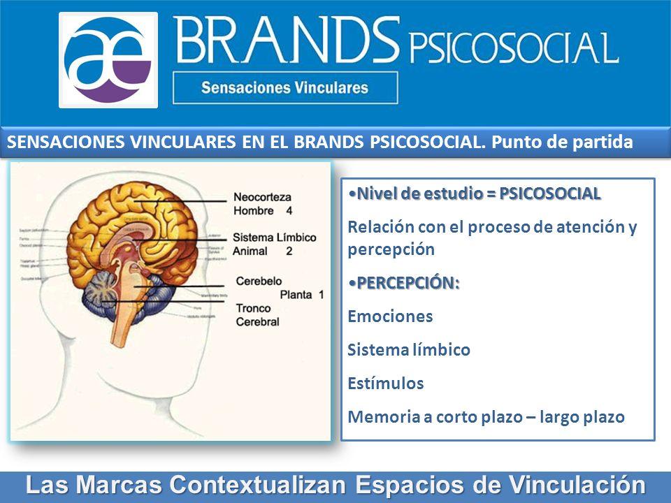 BRANDS PSICOSOCIAL: EMOCIONES Y SENTIMIENTOS Las Marcas Contextualizan Espacios de Vinculación emociones y sentimientos memoria.