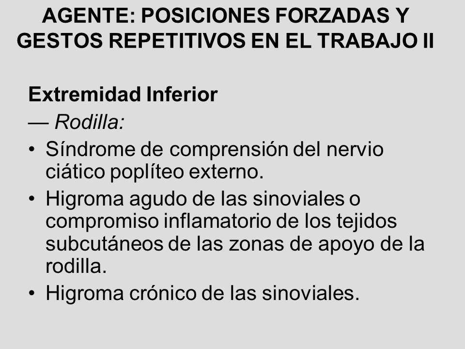 AGENTE: POSICIONES FORZADAS Y GESTOS REPETITIVOS EN EL TRABAJO II Extremidad Inferior Rodilla: Síndrome de comprensión del nervio ciático poplíteo ext