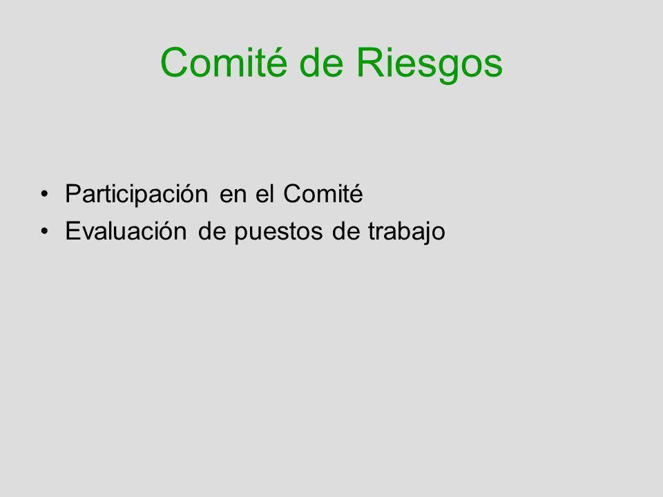Comité de Riesgos Participación en el Comité Evaluación de puestos de trabajo