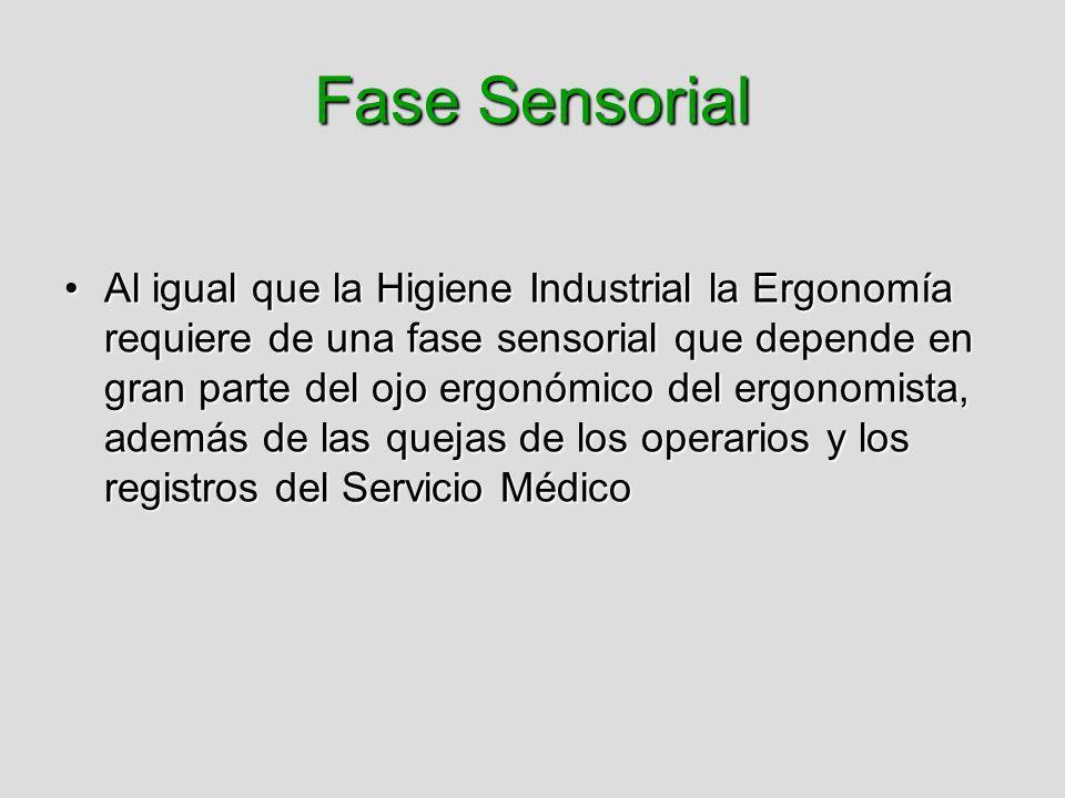 Fase Sensorial Al igual que la Higiene Industrial la Ergonomía requiere de una fase sensorial que depende en gran parte del ojo ergonómico del ergonom