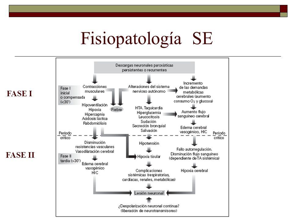 Fisiopatología SE FASE I FASE II