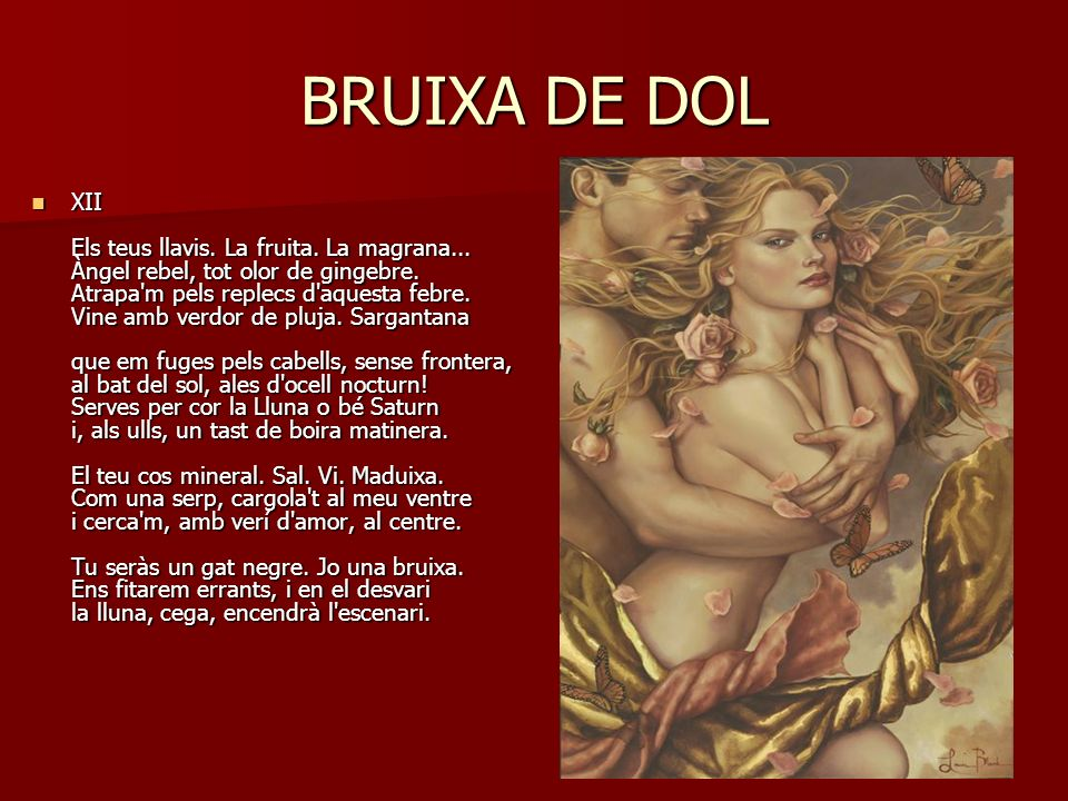 BRUIXA DE DOL Bruixa representa els poders femení eliminats de la cultura, la dona forta, i de dol vol dir que no és alegre perquè hi ha una càrrega sentimental, és a dir, ella ha tingut un fracàs matrimonial i als seus poemes parla dels fracassos i els sentiments que aquests provoquen.