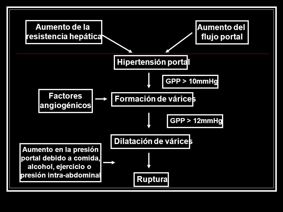 Aumento de la resistencia hepática Aumento del flujo portal Hipertensión portal Formación de várices Dilatación de várices Ruptura Factores angiogénic