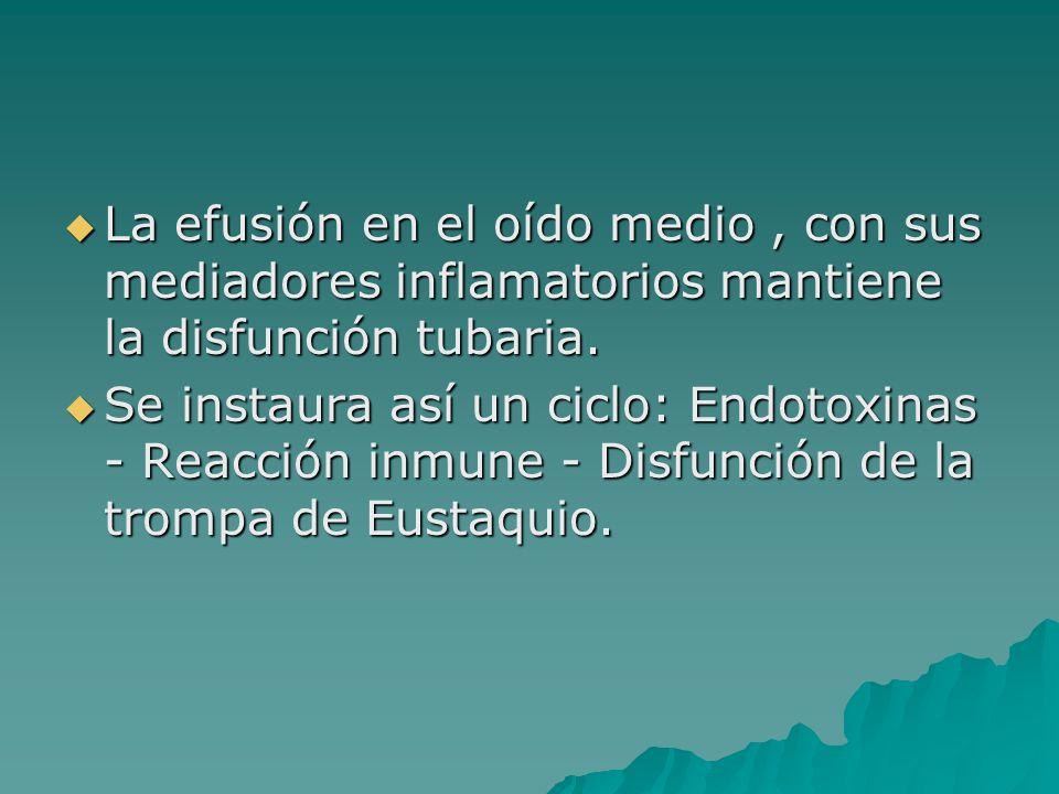 La efusión en el oído medio, con sus mediadores inflamatorios mantiene la disfunción tubaria. La efusión en el oído medio, con sus mediadores inflamat