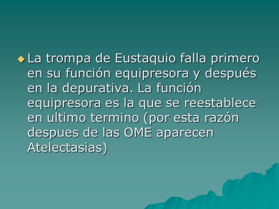 La trompa de Eustaquio falla primero en su función equipresora y después en la depurativa. La función equipresora es la que se reestablece en ultimo t