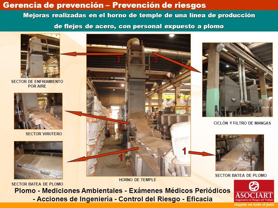 Gerencia de prevención – Prevención de riesgos Mejoras realizadas en el horno de temple de una línea de producción de flejes de acero, con personal ex
