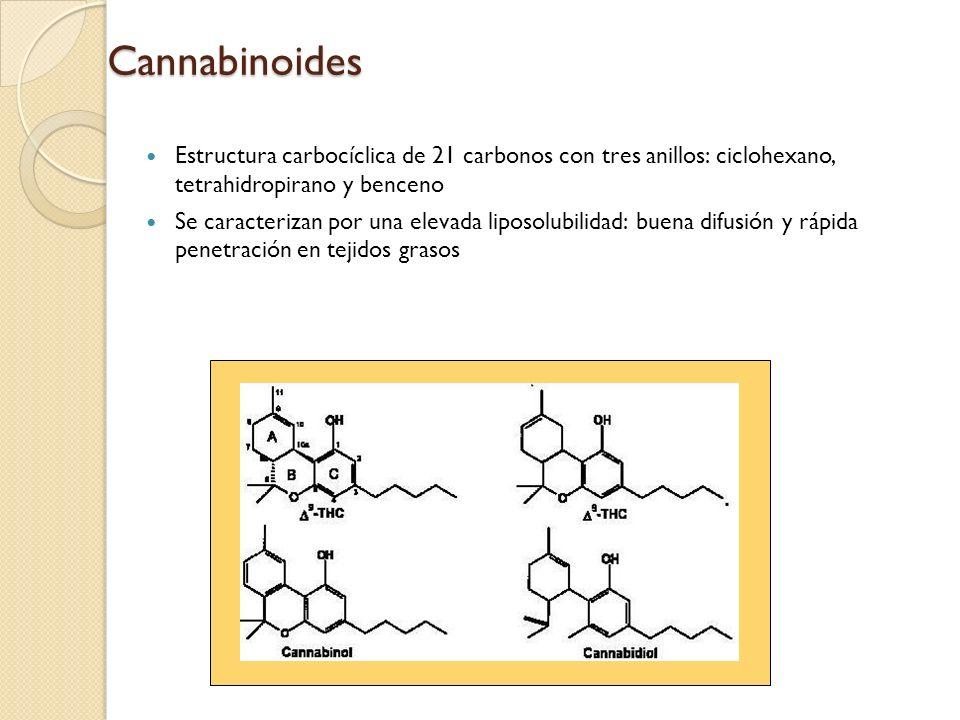 Cannabinoides Estructura carbocíclica de 21 carbonos con tres anillos: ciclohexano, tetrahidropirano y benceno Se caracterizan por una elevada liposol