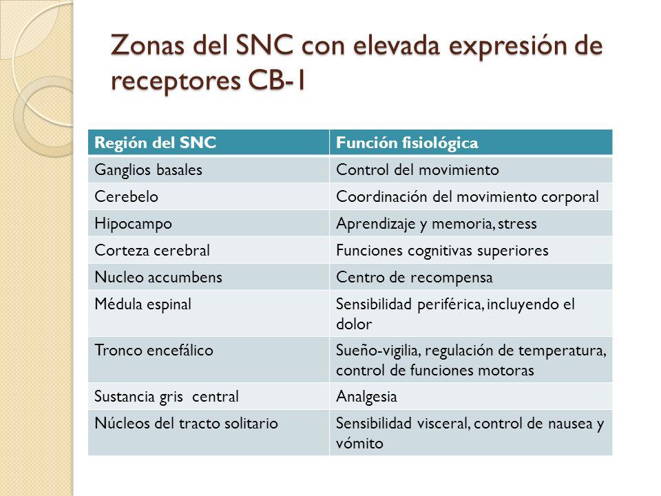 Región del SNCFunción fisiológica Ganglios basalesControl del movimiento CerebeloCoordinación del movimiento corporal HipocampoAprendizaje y memoria,