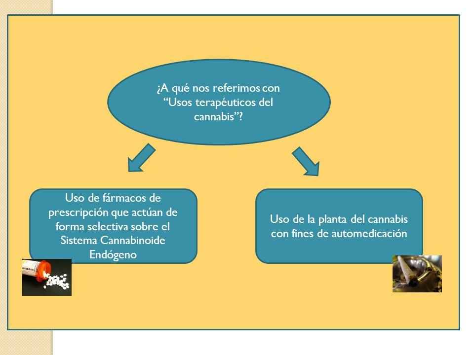 ¿A qué nos referimos con Usos terapéuticos del cannabis? Uso de fármacos de prescripción que actúan de forma selectiva sobre el Sistema Cannabinoide E