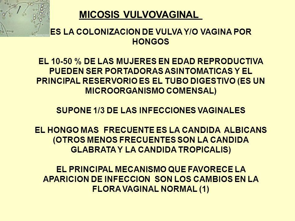 HERPES: * INFECCION EN HUMANOS = 6 ESPECIES HVS 1 = GENITAL OCASIONAL HVS 2 = GENITAL (50-70 % ASINTOMATICO) VIRUS VARICELA – ZOSTER CITOMEGALOVIRUS VIRUS EPSTEIN BARR HV HUMANO TIPO 6 * PRIMOINFECCION FASE LATENTE (CRONICO) INFECCION RECURRENTE (CLINICA O ASINTOMATICA)