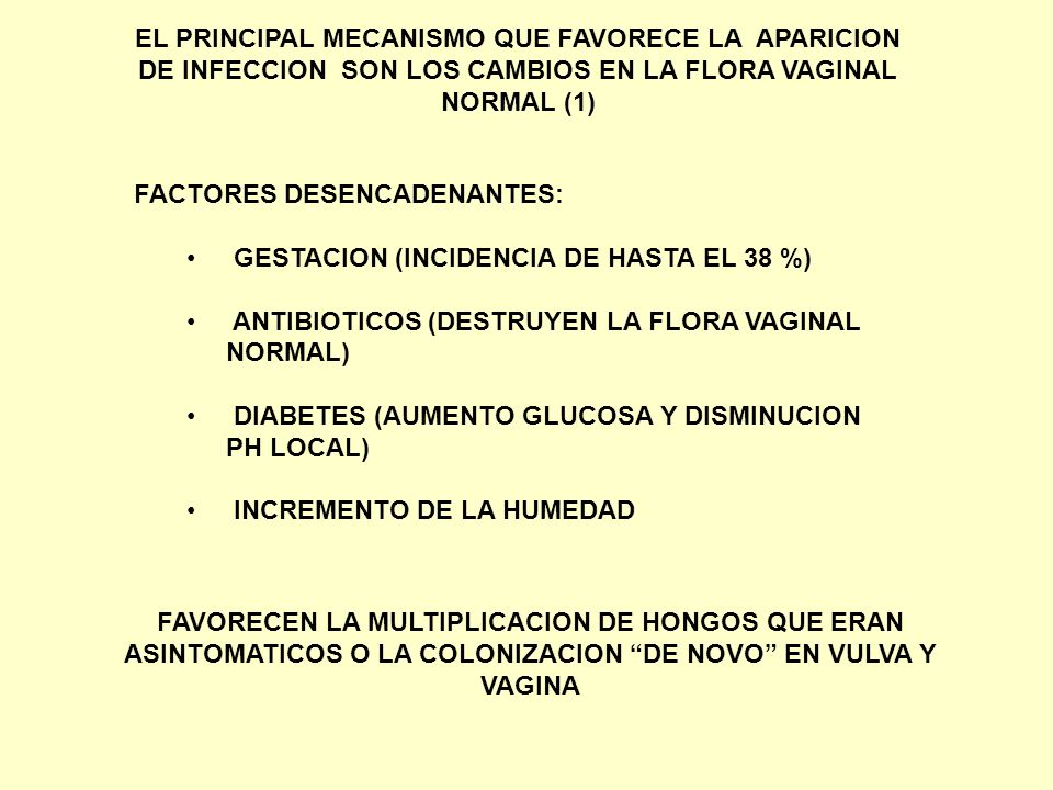 FACTORES DESENCADENANTES: GESTACION (INCIDENCIA DE HASTA EL 38 %) ANTIBIOTICOS (DESTRUYEN LA FLORA VAGINAL NORMAL) DIABETES (AUMENTO GLUCOSA Y DISMINU