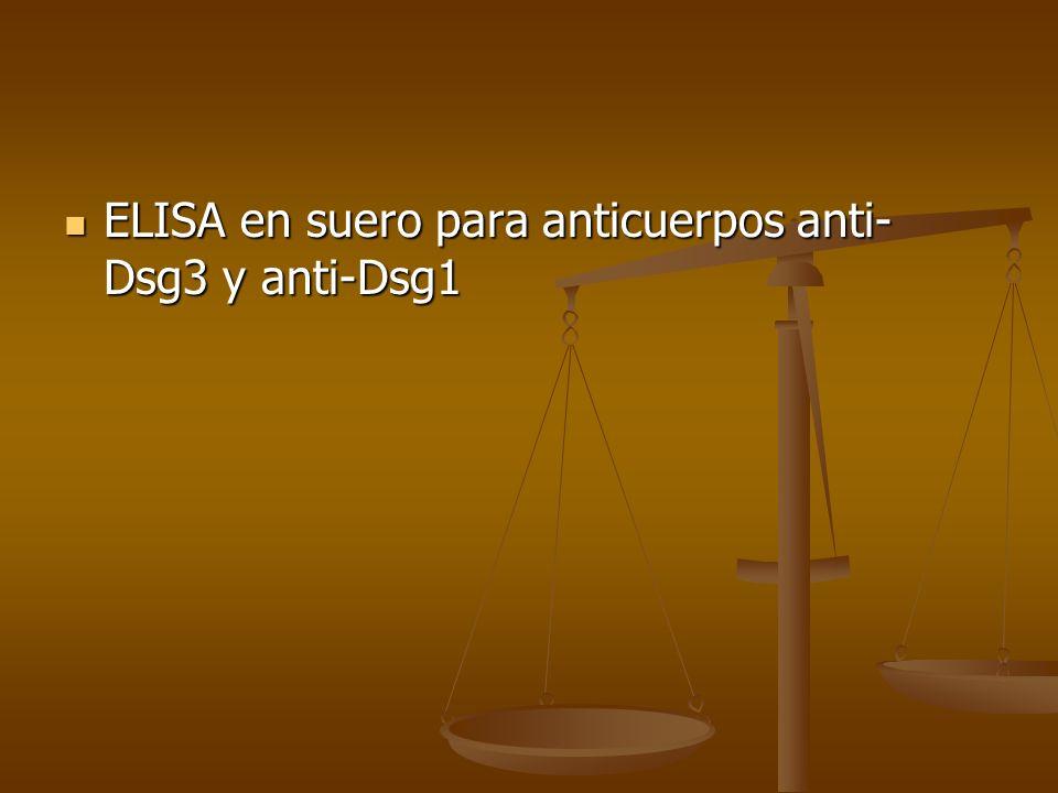 ELISA en suero para anticuerpos anti- Dsg3 y anti-Dsg1 ELISA en suero para anticuerpos anti- Dsg3 y anti-Dsg1