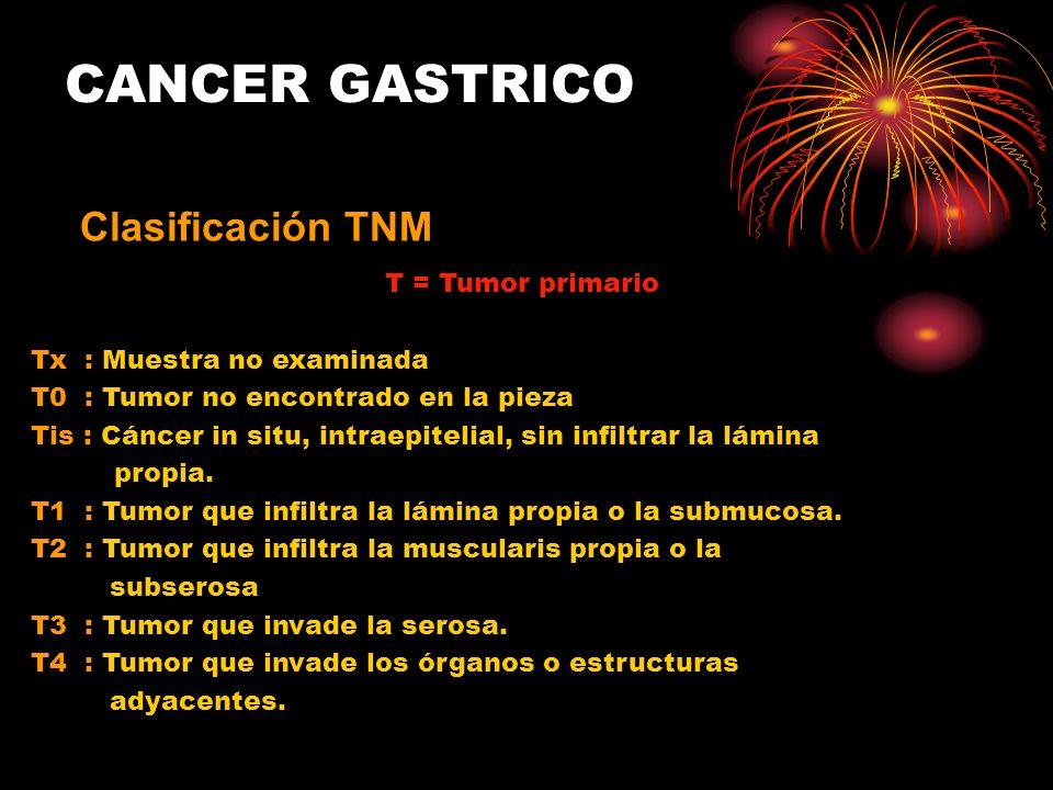 T = Tumor primario Tx : Muestra no examinada T0 : Tumor no encontrado en la pieza Tis : Cáncer in situ, intraepitelial, sin infiltrar la lámina propia