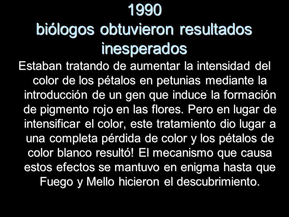 1990 biólogos obtuvieron resultados inesperados Estaban tratando de aumentar la intensidad del color de los pétalos en petunias mediante la introducci