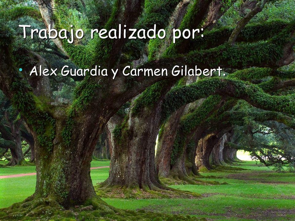 Trabajo realizado por: Alex Guardia y Carmen Gilabert. Alex Guardia y Carmen Gilabert.