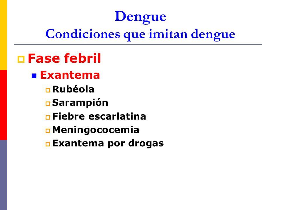 Dengue Condiciones que imitan dengue Fase febril Exantema Rubéola Sarampión Fiebre escarlatina Meningococemia Exantema por drogas