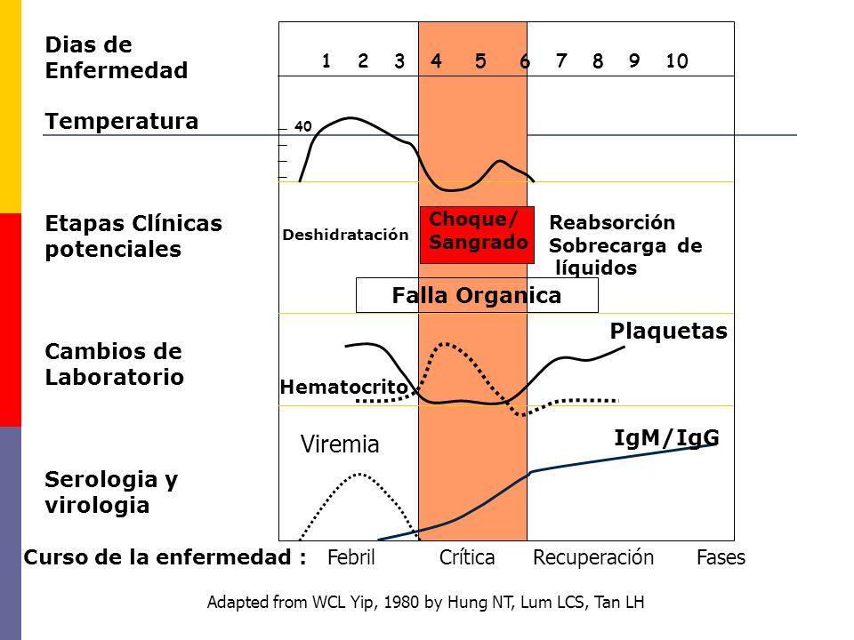 1 2 3 4 5 6 7 8 9 10 40 Viremia Curso de la enfermedad : Febril Crítica Recuperación Fases Choque/ Sangrado Reabsorción Sobrecarga de líquidos Deshidr