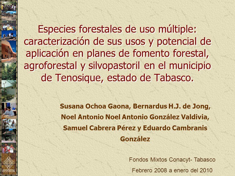 Especies forestales de uso múltiple: caracterización de sus usos y potencial de aplicación en planes de fomento forestal, agroforestal y silvopastoril en el municipio de Tenosique, estado de Tabasco.