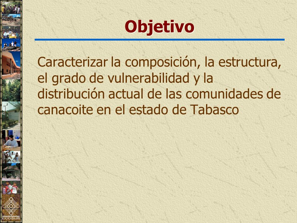 Objetivo Caracterizar la composición, la estructura, el grado de vulnerabilidad y la distribución actual de las comunidades de canacoite en el estado de Tabasco