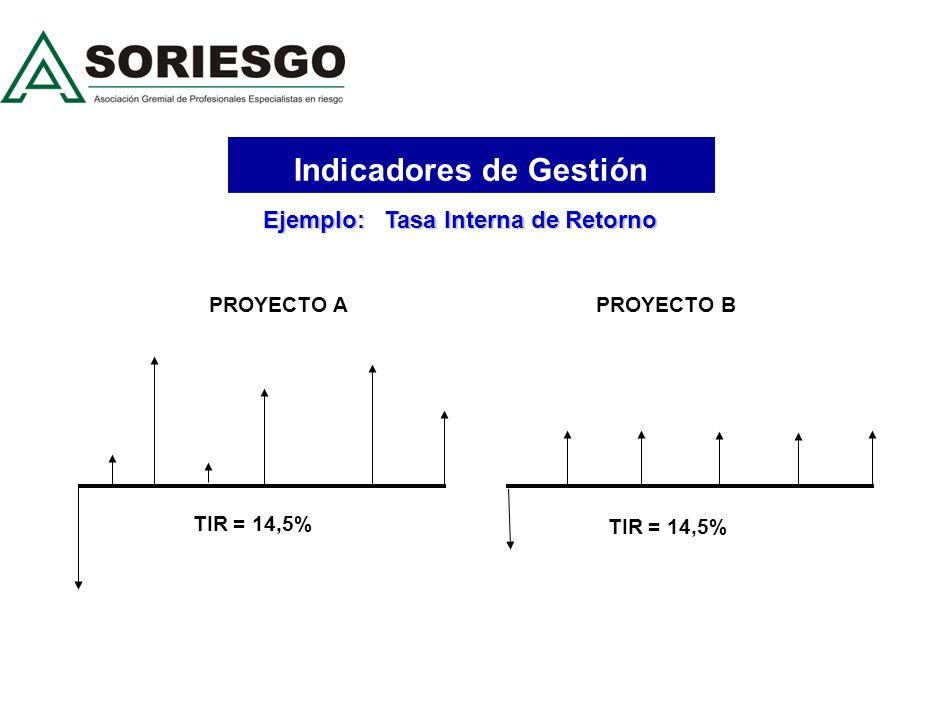 Indicadores de Gestión Rentabilidad Riesgo ROA (Return On Asset) ROE (Return On Equity) TIR (Tasa Interna de Retorno) IC (Indice de Contribucion) MNG